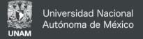 UNAM Universidad Nacional Autonoma de Mexico (National Autonomous University of Mexico)
