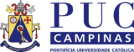 Pontifical Catholic University Of Campinas