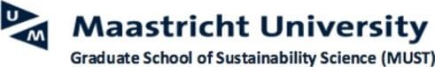 Maastricht University, ICIS