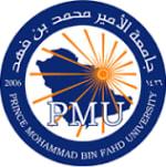 Prince Mohammad Bin Fahd University