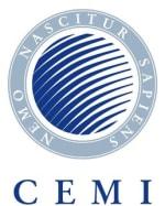 Central European Management Institute (CEMI)