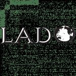 Lado International Institute