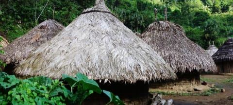 How A Colombian University is Preserving Indigenous Culture