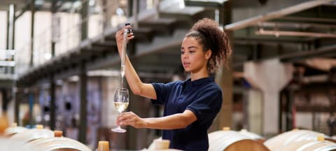 Three Reasons to Study and Work in the Food and Wine Industry