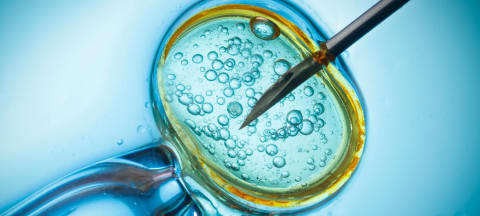 Why Study Reproductive Medicine?