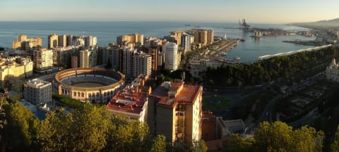 Why Study Business on Spain's Costa del Sol?
