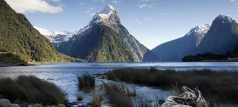Is New Zealand a Model for Indigenous Student Success?
