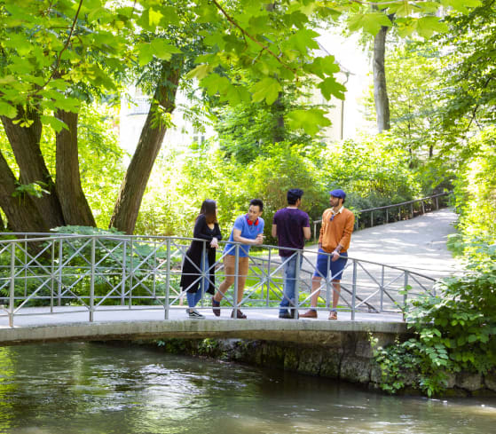 7 Reasons You Should Choose Munich to Study Abroad