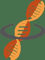 Rosetta Institute of Biomedical Research - Summer Camps & Workshops