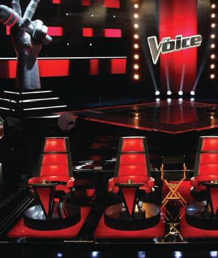 A voz