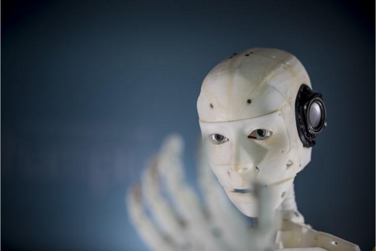 110161_robot.JPG