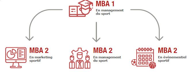 111003_mba-en-management-du-sport_schema-mba.png