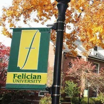 118227_FelicianUniversityFallFlag.jpg