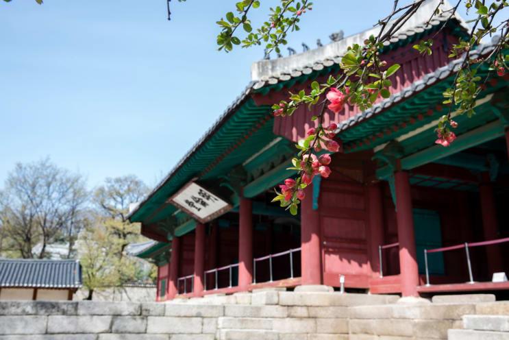 119303_seong-gyungwan.jpg