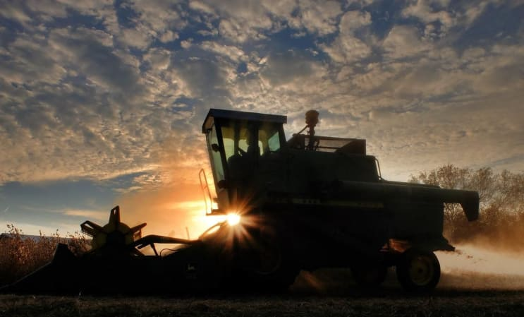 combine, soybean harvest, sunset
