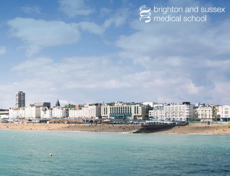 129168_Brightonandsussex.png
