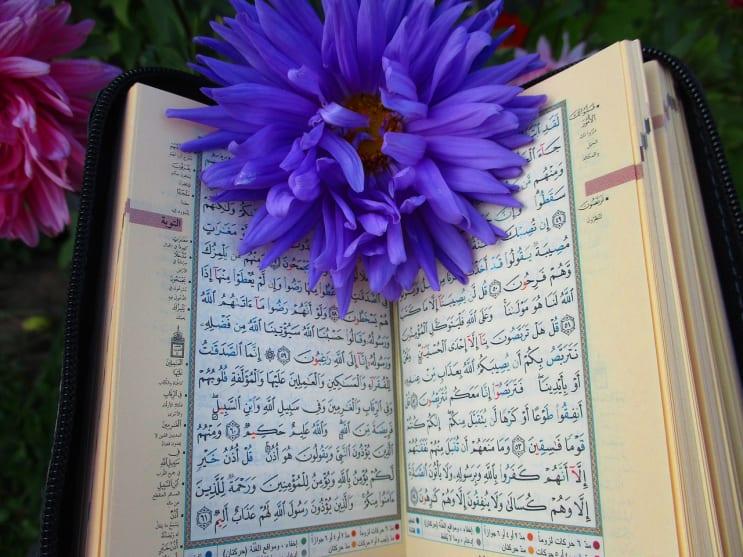 quran, shrine, scripture