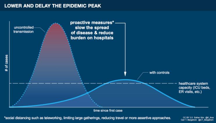 Flatten the curve - the coronavirus
