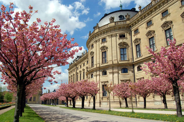 133817_university_springtime.jpg