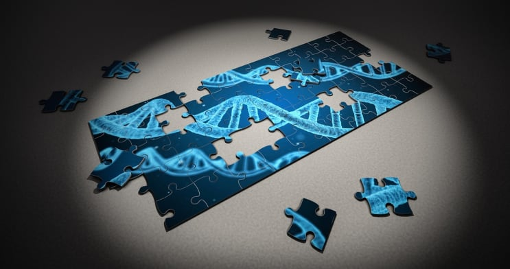 puzzle, dna, research