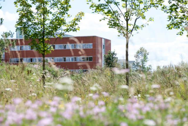 biozentrum sommer-100