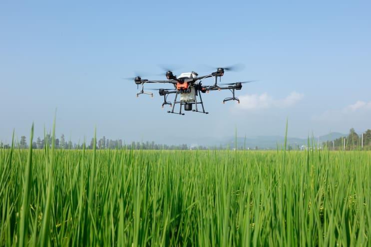 dji, uav, plant protection drone