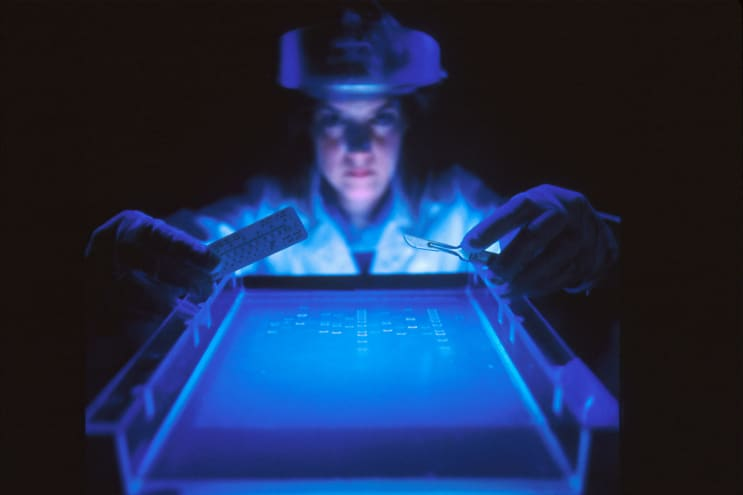 DNA Fragmentation. A dye marker on agarose gel used to separate DNA by a female scientist. The smaller fragments move faster, the larger ones move slower. This separation process is used to analyyze the size of DNA fragments, to map DNA, to separate fragments of DNA to create clones.
