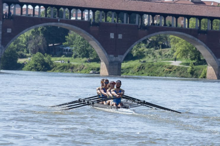 Rowers in Pavia