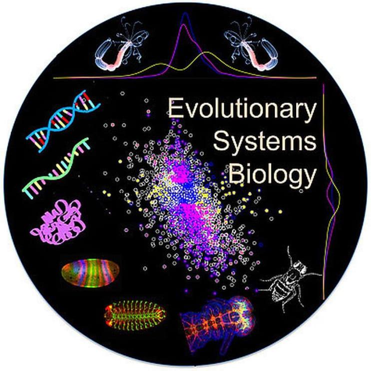 98113_MScEvolutionarySystemsBiology-UniversityofVienna.jpg